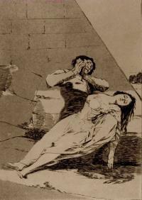 Los Caprichos de Goya.